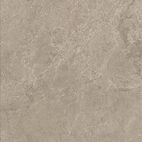 STONEGRES-taupe-30,2x60,4